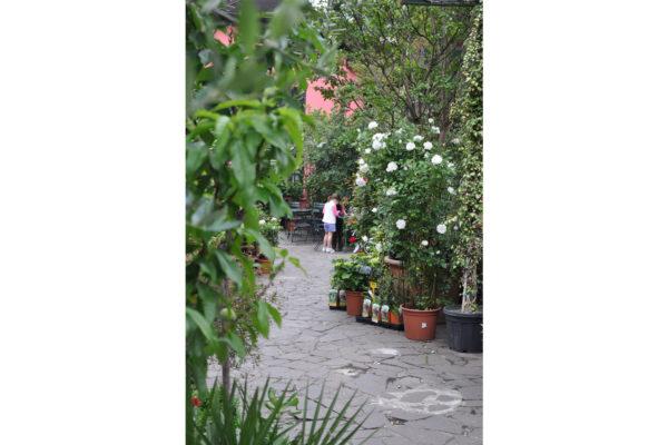 giardino Capoverde