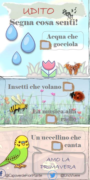VOLANTINO ATTIVIT' PER BAMBINI FREE DOWNLOAD PRINTABLE SCARICABILE GRATUITAMENTE VOLANTINO CAPOVERDE VIVAIO MILANO